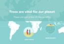 Ecosia 搜尋爬文也可以日行一善,平均每 1.7 秒種一棵樹愛地球