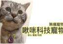 【開箱】非植入式晶片推薦,寵物科技吊牌
