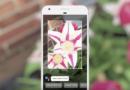 Google Lens 是什麼?iOS 怎麼用?下載 Google Photos App 立即體驗