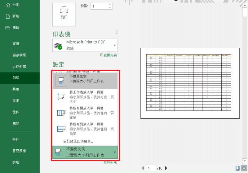 Excel 列印 選項